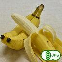 [有機栽培]バナナ(600g)