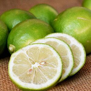 特別栽培 夏レモン (1kg)