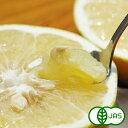 特別栽培 国産傷ありグレープフルーツ (1Kg)