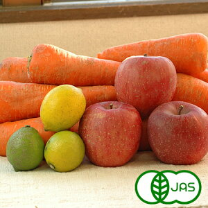 にんじんジュース基本のセット Lサイズ(有機人参10kg+レモン800g+リンゴ8玉)