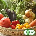 【JAS有機栽培】旬の有機野菜 Lセット