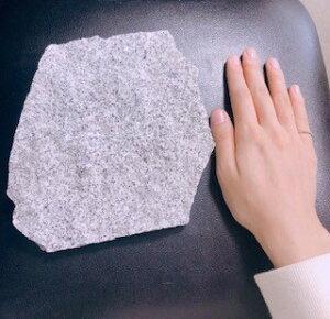 小動物 爬虫類 クールマット 快適自然石クールマット アクアリウム テラリウム