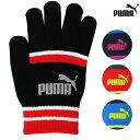 PUMA<プーマ> マジックグローブ<手袋> Mサイズ 4カラー 41286-fji