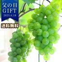 【父の日 プレゼント ギフト 鉢植え 果樹鉢 送料無料】休肝日を愉しむ〜デザート編〜果樹鉢「幻の葡萄・タノレッド」…