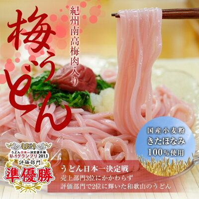 紀州梅うどん4食スープ付