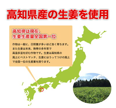 国産生姜糖(生姜チップ)3袋セット【全国送料無料】