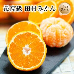 田村みかん Sサイズ 5kg送料無料(北海道、沖縄を除く)有田みかんの最高ブランド!贅沢な美味しさを是非!お歳暮にも人気のミカンです。