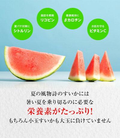 すいかには暑い夏を乗り切る栄養素がたっぷり!