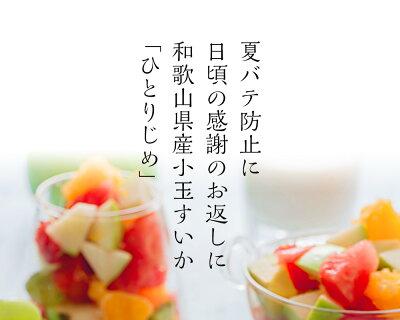 夏バテ防止に、日ごろの感謝のお返しに。和歌山の小玉すいか。