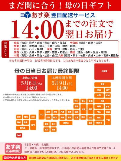 https://image.rakuten.co.jp/bundara/cabinet/04494153/item/imgrc0108918814.jpg