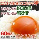 こだわり家族のこだわり卵 お得な60個入【送料無料】栄養機能食品(ビタミンE)。ビタミンE 30倍、ビタミンD 8倍!生で食べても安全。濃厚なコクのある黄身が特...