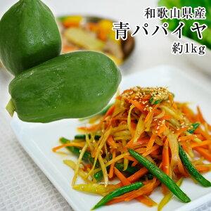 和歌山県産 青パパイヤ 約1kg(1玉)パパイン酵素たっぷり!ソムタムやサラダ、きんぴら、野菜炒め、フライに煮物、お味噌汁、カレーにも!※発送期間:9月上旬〜11月月下旬頃まで