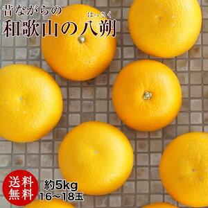 和歌山の八朔(ハッサク)約5kg減農薬・有機肥料栽培【送料無料】L〜2Lサイズ 約5kg(16〜18玉)上品な甘み、程よい酸味、独特の苦みが美味しい昔ながらのはっさくです。