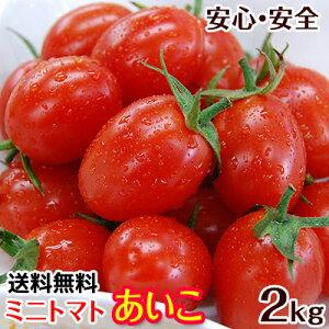 2020年ご予約開始 ミニトマトあいこ(アイコ)2kg【送料無料】和歌山のエコファーマーが減農薬・減化学肥料で作るこだわりの果肉・栄養たっぷりの美味しいトマト(ロケットトマト)
