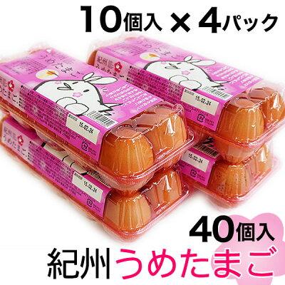 紀州うめたまご40個(※破損保証分5玉を含む)送料無料くたまごかけごはんが美味しい!和歌山の自然と梅エキスが育んだ葉酸1.5倍鶏卵、レシピ