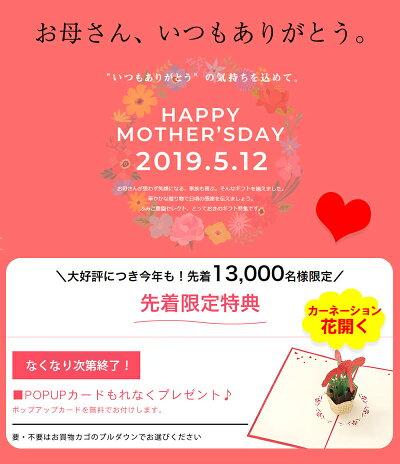 母の日プレゼント早期予約特典!