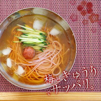 梅冷麺は氷を入れるとより美味しい!