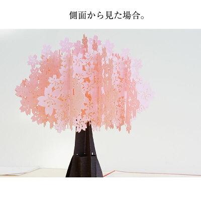 感動が飛び出す!ポップアップメッセージカード桜