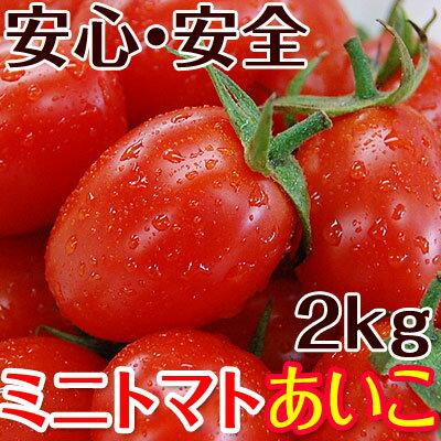 完熟ミニトマトあいこ