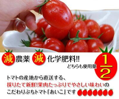ミニトマトあいこ(アイコ)2kg【送料無料】和歌山のエコファーマーが減農薬・減化学肥料で作るこだわりの果肉・栄養たっぷりの美味しいトマト(ロケットトマト)