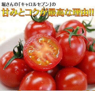 しっかりと作り込んだ土壌で育つ元気なトマト