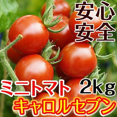 ミニトマトキャロルセブン2kg【送料無料】減農薬・減化学肥料で栽培する、驚きの糖度と絶妙のコク、濃厚な美味しさが余韻を引く美味しさ