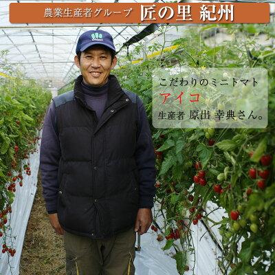 減農薬、減化学肥料で育てるミニトマト