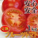 フルーツトマト1kg(送料無料)匠の里紀州 假家英明が育てる減農薬・減化学肥料栽培、土作りにこだわった安心安全なトマト驚きの糖度とコクが余韻を引く美味しさ