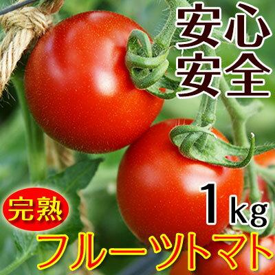 こだわりフルーツトマト1kg(送料無料)匠の里紀州假家英明が育てる減農薬・減化学肥料栽培、土作りにこだわり抜いた安心安全なトマト驚きの糖度と絶妙のコクが余韻を引く、もうひと口食べたくなる美味しいフルーツトマト!ハウス栽培/サラダ/パスタ