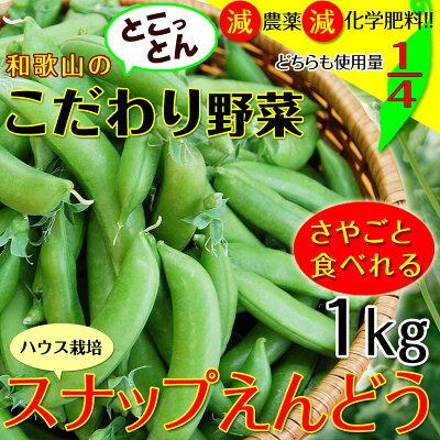 こだわりスナップえんどう1kg(送料無料)匠の里紀州が育てる安心安全でさやごと食べれる、驚きの甘さのスナック豌豆を産地直送でお届け
