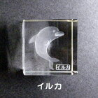 クリスタル文鎮『イルカ』/立方型ペーパーウェイト)【3Dクリスタル】
