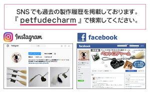 『petfudecharm』で検索してください。