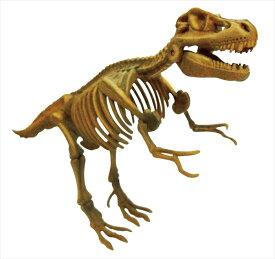 骨のパズルを組み立てると、本格的な化石の恐竜が出来上がります! ビバリー 3D恐竜パズル ミニ ティラノサウルス