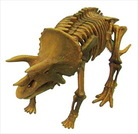骨のパズルを組み立てると、本格的な化石の恐竜が出来上がります! ビバリー 3D恐竜パズル ミニ トリケラトプス