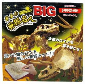 さらにBIGになった! 化石を発掘する楽しさ 掘って、恐竜を組み立てよう! 黄金の発掘名人BIG トリケラトプス