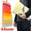 エセルテESSELTEソーテッドA4壁掛けファイル/デザインおしゃれ輸入海外ファイル雑貨北欧