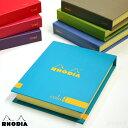 Rhodia 0031