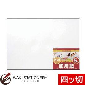 ナカバヤシ 画用紙 5枚 四ツ切 SD-カ-102