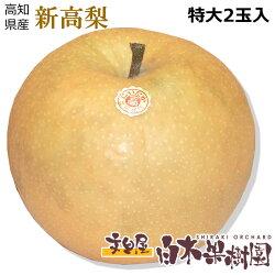新高梨1個約1キロもの特大梨2個入り約2kg小箱