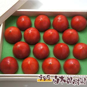 高知県産超高級徳谷トマト【とくたにトマト】 800gフルーツトマト木箱入り【4月以降クール便】