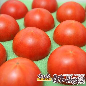 産地直送便 麻岡まるさんちのフルーツトマトサントマト約800グラム箱