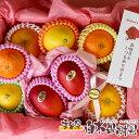 【送料込】【包装無料】母の日限定品【感謝セット】柑橘詰め合わせフルーツギフト 高知県産フルーツ【お母さん、あり…