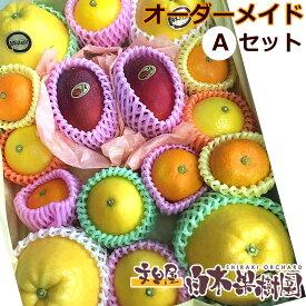 【果物詰め合わせ】白木果樹園旬のオーダーメイドフルーツ詰め合わせ【Aセット】