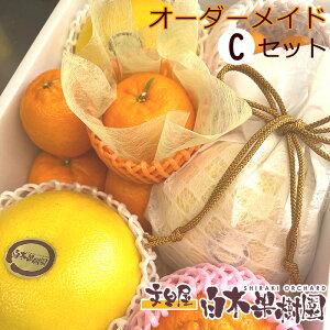 白木果樹園旬のオーダーメイドフルーツ詰め合わせ【Cセット】
