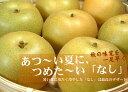 送料無料・和歌山の梨 長寿品種4kg【10〜11玉】ギフト選別[特選品]寺西梨園からお届けします。