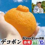 紀州有田豊作会デコポン5kg