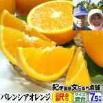 武内さんちのバレンシアオレンジご家庭用【優】選別サイズ混合7.5kg有田郡吉備町奥(おき)地区から