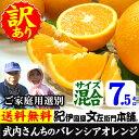 武内さんちのバレンシアオレンジご家庭用【送料無料】サイズ混合7.5kg有田郡吉備町奥(おき)地区から