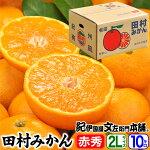 田村みかん/特選ギフト品10kg【2Lサイズ】赤秀