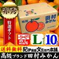 紀州有田「田村みかん」特選ギフト品【Lサイズ】10kg自信のお味、抜群の美味しさです。